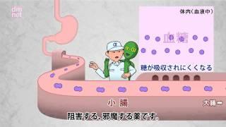 3-10. α-グルコシダーゼ阻害薬