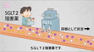 3-14. SGLT2阻害薬