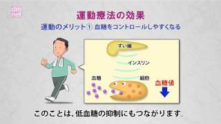 3-5. 運動療法でインスリンの効果を高めよう