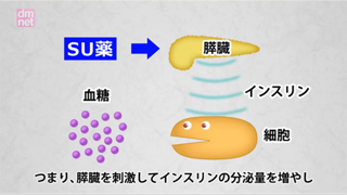 3-8. スルホニル尿素薬(SU)薬