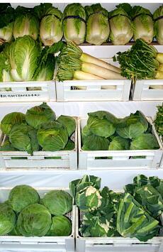 猛暑で野菜値上がり