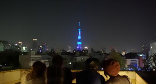世界糖尿病デー 東京タワー