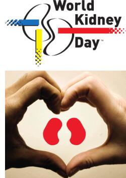 世界腎臓デー 腎機能チェックし慢性腎臓病(CKD)を早期発見