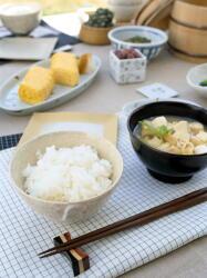 「ごはんを中心とした和食」は世界に誇れる健康食 栄養バランスが改善