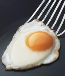 朝食をしっかりとると肥満を予防できる