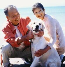 生活スタイルの改善が遺伝子を変える 5年間でテロメアが10%延長