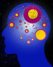 長寿遺伝子「サーチュイン」で認知症を予防 治療法開発へ