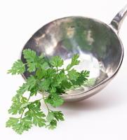 骨を丈夫にする食生活 カルシウムを豊富に含む10の食品