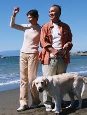 アルツハイマー病はウォーキングで予防できる 運動不足が最大の原因