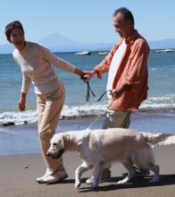犬とのふれあいが愛情ホルモンを刺激 うつ病や認知症の治療に応用