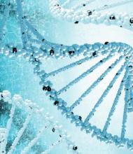 糖尿病に関わる新たな遺伝子を発見 発症前に発見し保健指導で予防