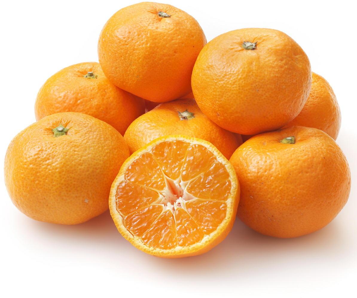 温州ミカンが生活習慣病を改善 果物のカロテノイドが老化を防ぐ