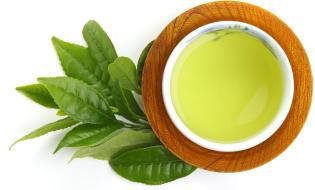 「緑茶」の摂取が糖尿病リスクを減少 九州大学・久山町研究で明らかに