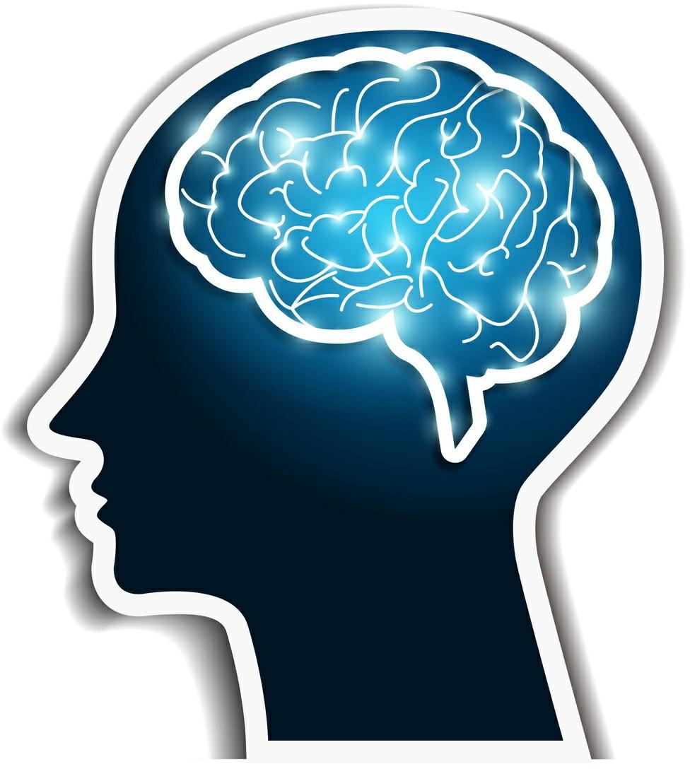 認知症の発症を血液検査で予測 100%の的中率で判別に成功 長寿研