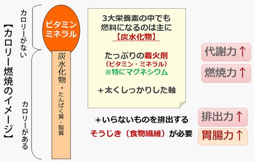 図4 食事のポイント 代謝力(マッチ棒理論)