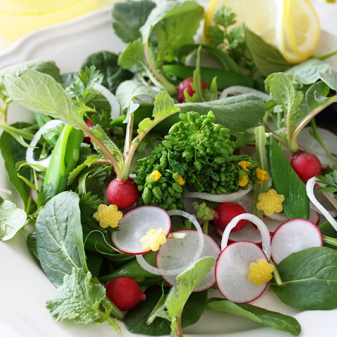 緑色の葉物野菜を毎日食べると認知能力の衰えを抑えられる