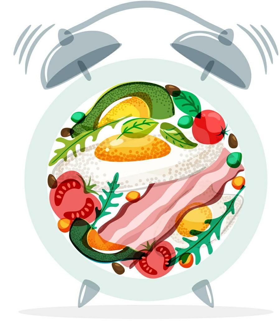 「時間栄養学」の新たな発見 食事のタンパク質が「体内時計」を調整