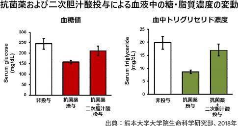 抗菌薬および二次胆汁酸投与による血液中の糖・脂質濃度の変動