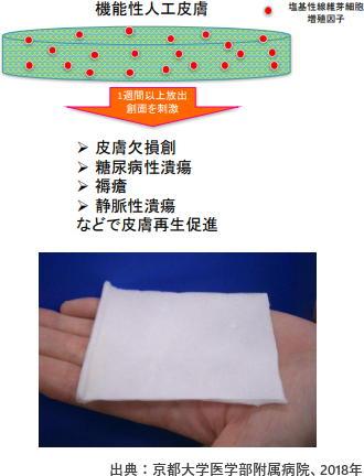 京都大学発の新たな人工皮膚が承認 「糖尿病性潰瘍」に効果