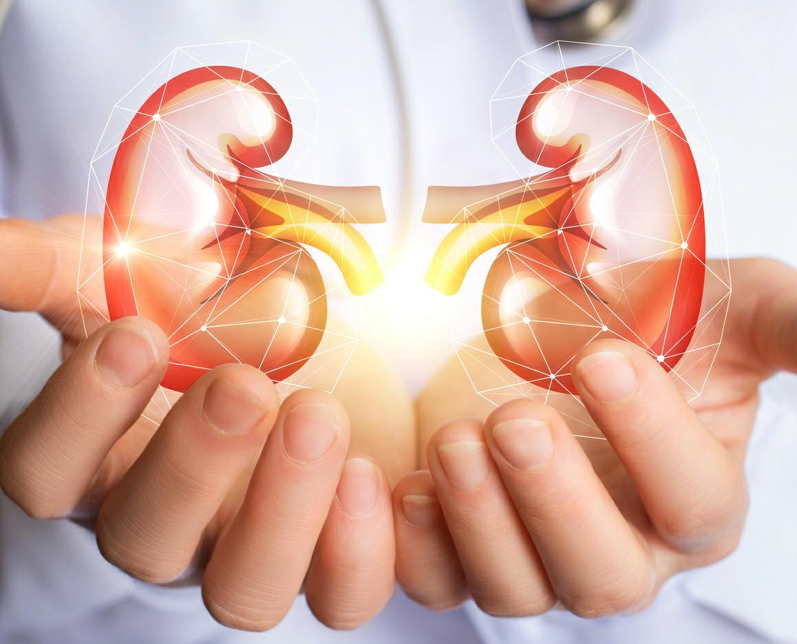 世界の8.5億人が「腎臓病」 腎臓病の恐ろしさを知らない人が大半