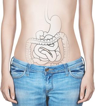 腸内フローラが「睡眠の質」に影響 腸内環境と脳は相互に作用 食事で睡眠を改善できる可能性