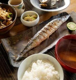 「東京栄養サミット2020」を12月に開催 栄養改善に向けて国際連携を深める 「栄養不良の二重負荷」も課題に