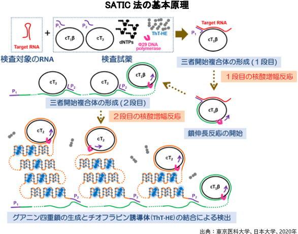 SATIC法の基本原理