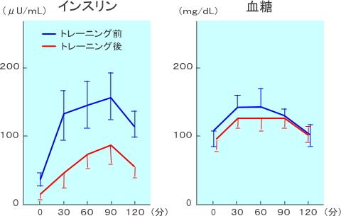 トレーニング前後の血糖とインスリン濃度