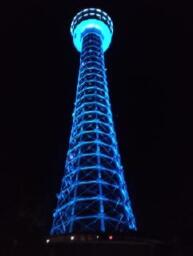 世界糖尿病デー 横浜マリンタワー